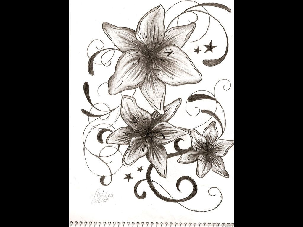 Tiger lily tattoo and calla lilly 7527 lily tattoo design ideas tiger lily tattoo and calla lilly 7527 lily tattoo design ideas izmirmasajfo Gallery