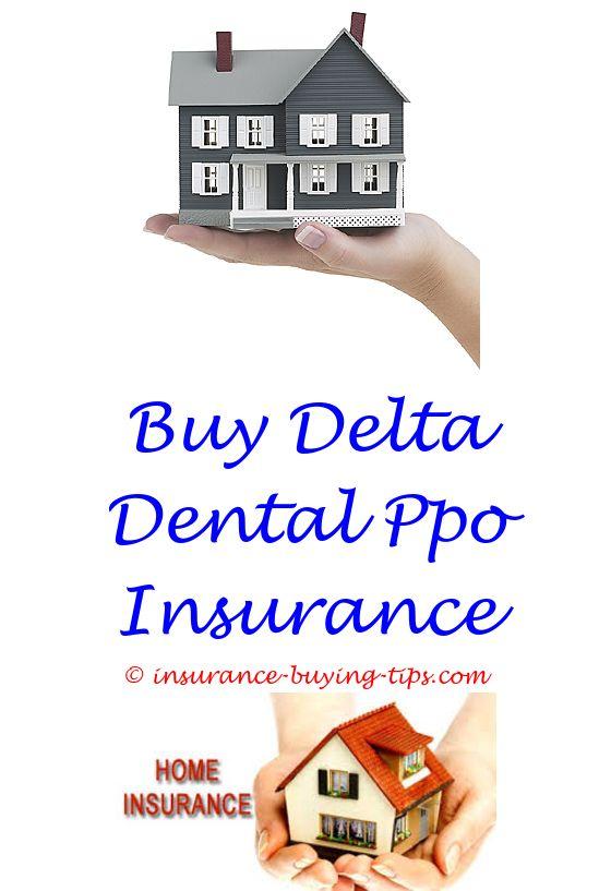 Geico Life Insurance Quote Prepossessing Car Insurance Quotes Lexington Ky  Buy Health Insurance Term Life