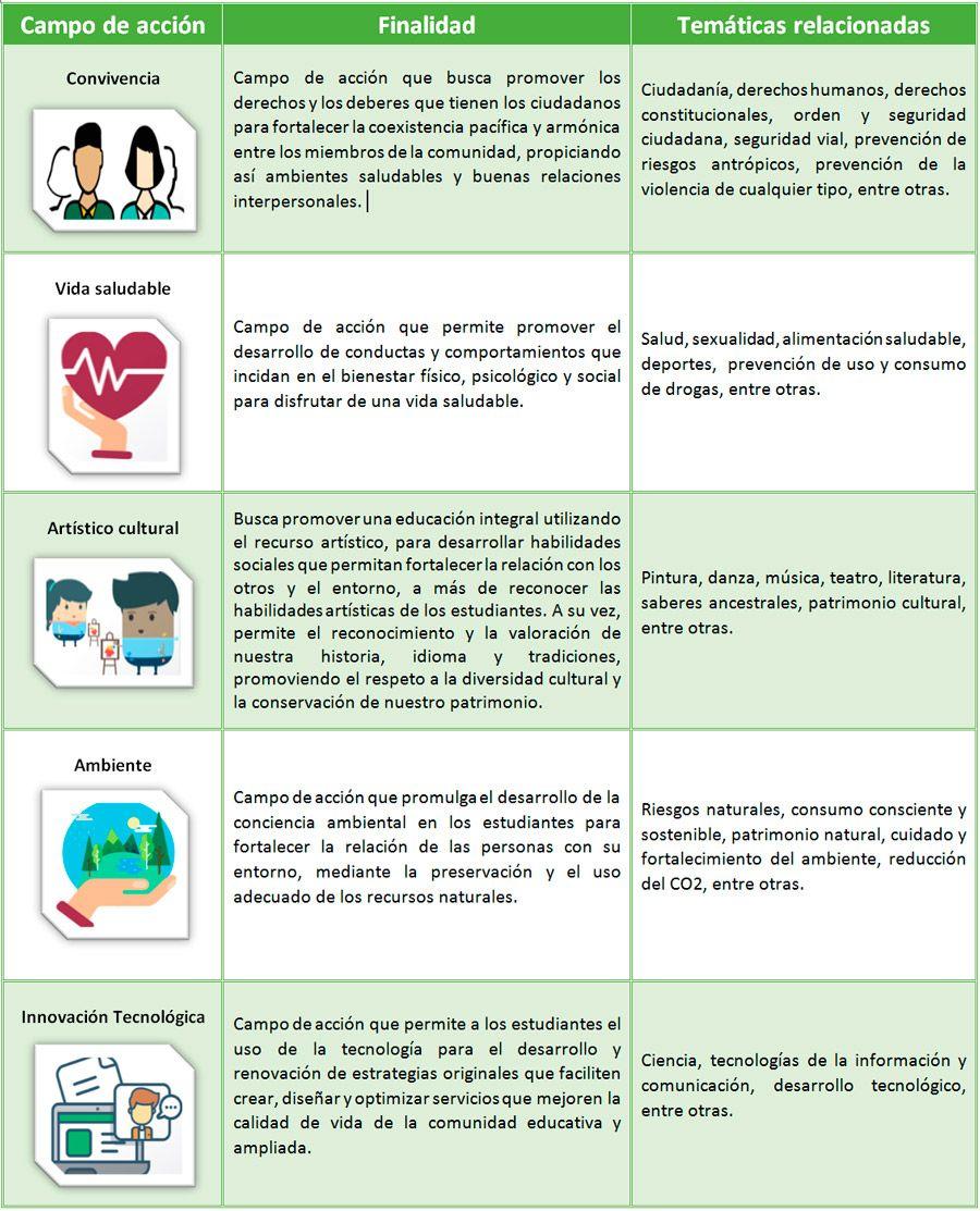 Campos De Acción Ppe Ministerio De Educacion Educacion Pedagogia