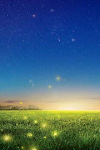 Fireflies Country Field Iphone 6 Plus Hd Wallpaper Cellphone
