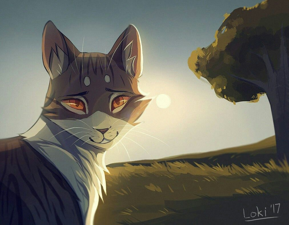 Картинка кошка воин