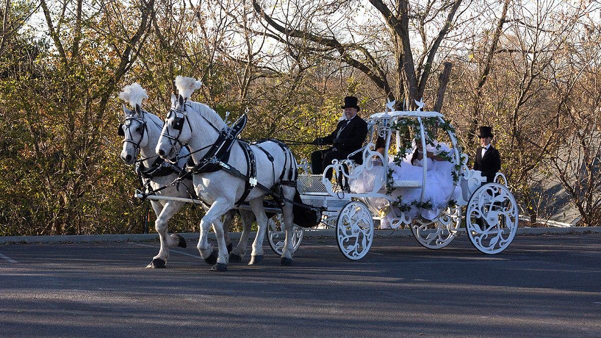 Kutsche Hochzeit Kutsche Hochzeitskutsche Hochzeit