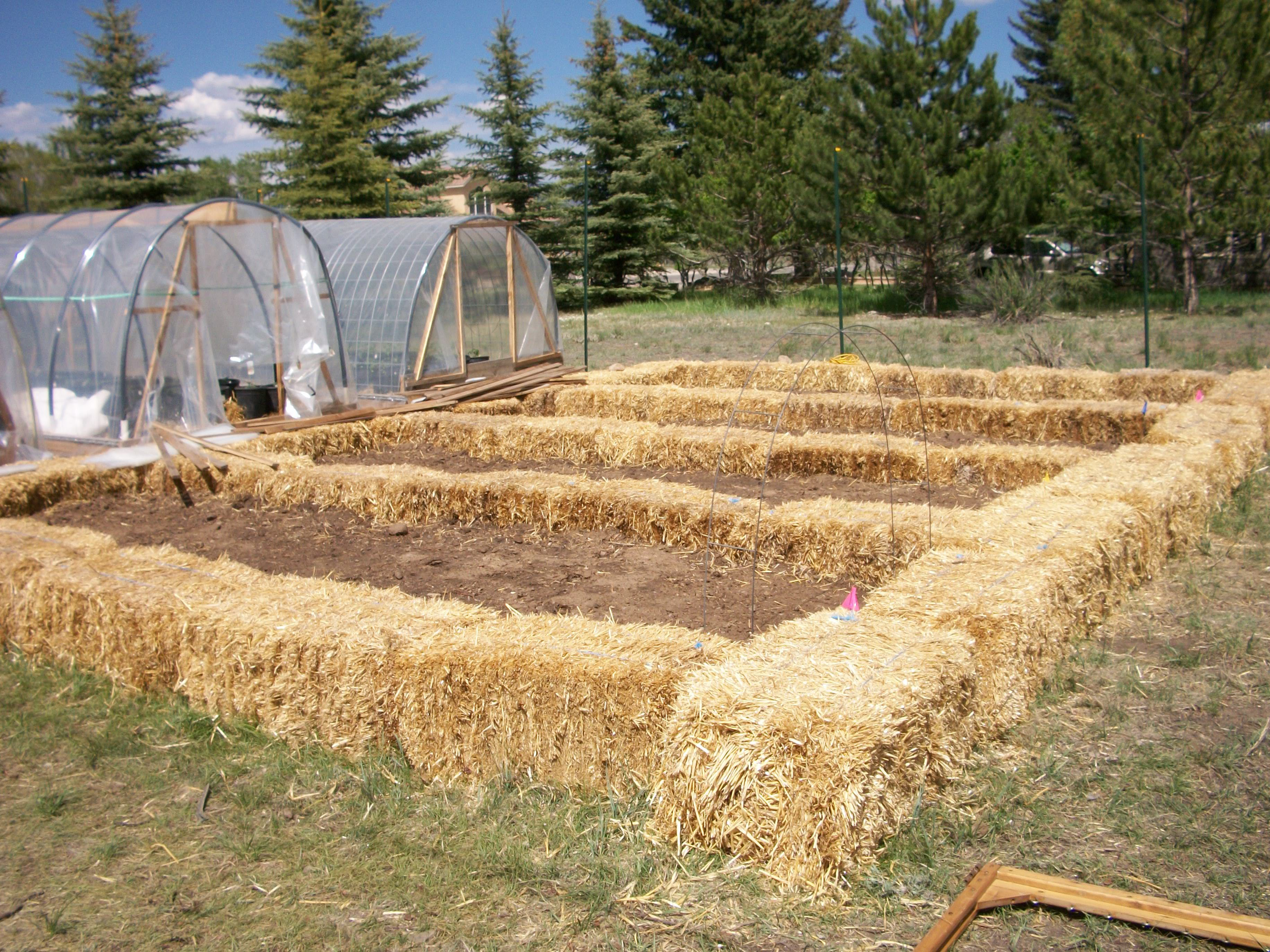 raised vegetable bed out of pine straw bales - Google Search ...