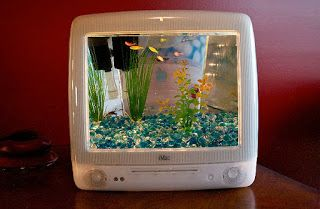 List Nation 5 Unique Diy Betta Tank Ideas Fish Aquarium Betta