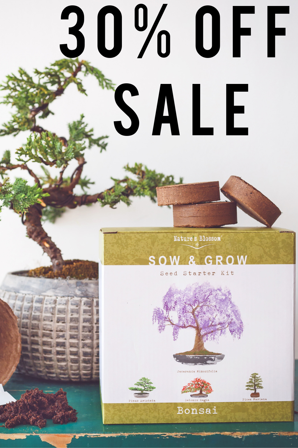 Bonsai Tree Seed Starter Kit Discount Code Etsylaunch30 Until July 31st Get Growing Today Bonsai Tree Types Herb Garden Kit Unique Garden Gifts