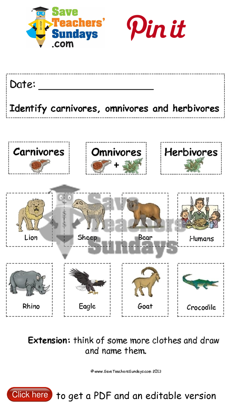 Carnivores omnivores and herbivores animals to sort Go to http – Herbivore Carnivore Omnivore Worksheet