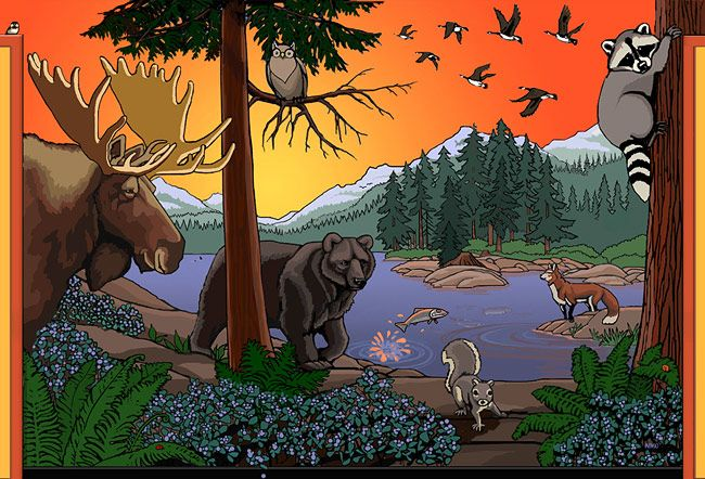 Wildlife Wall Mural Childrens Wall Mural BC Landscape Wiildlife