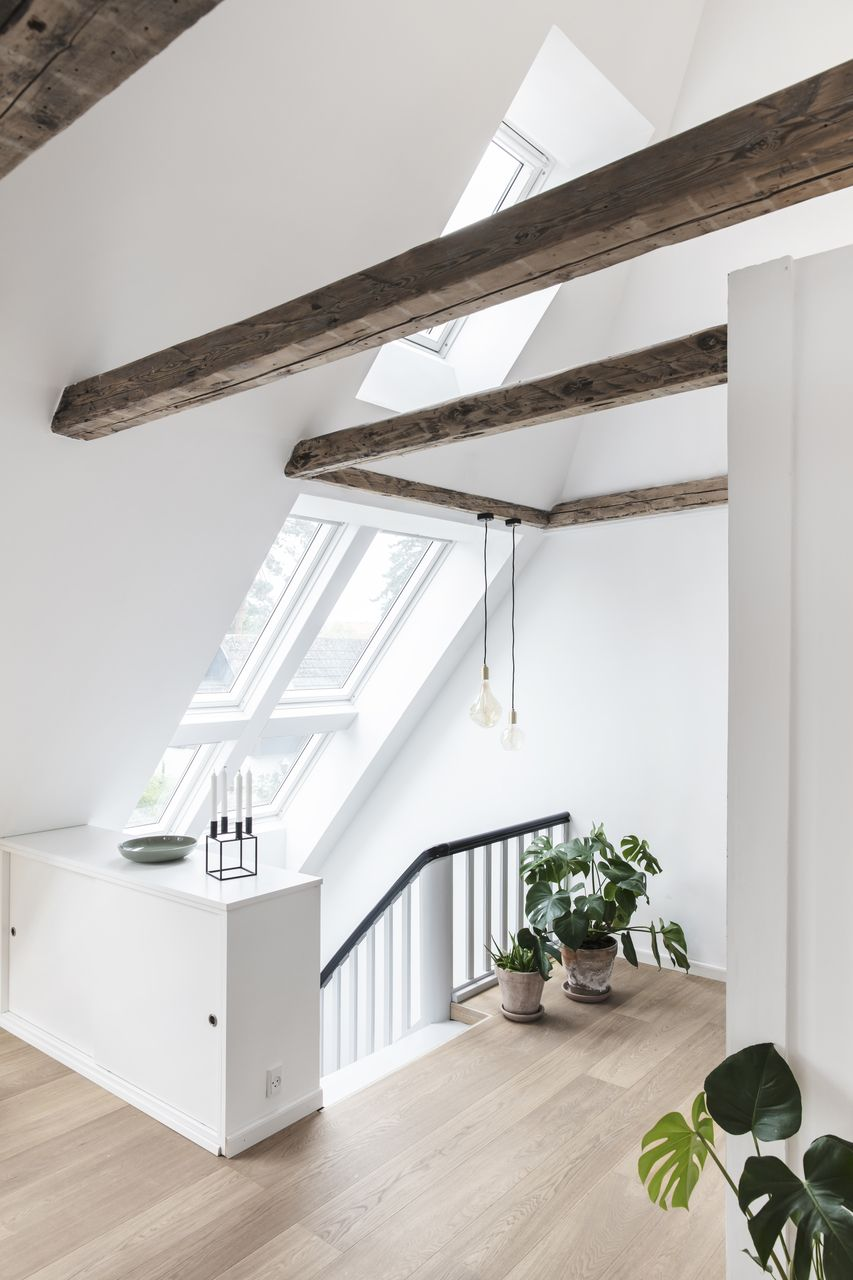 #loftconversions