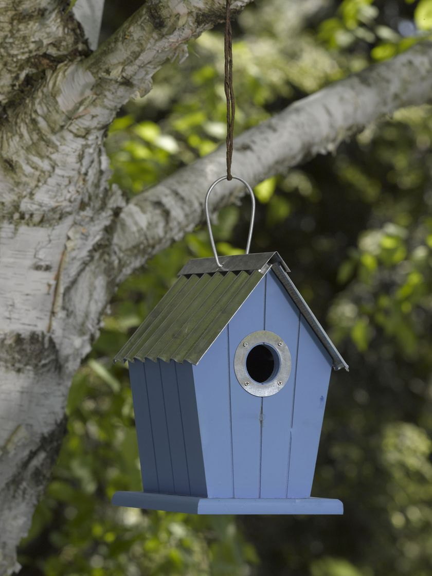 Decorative Metal Bird Houses House And Home Design