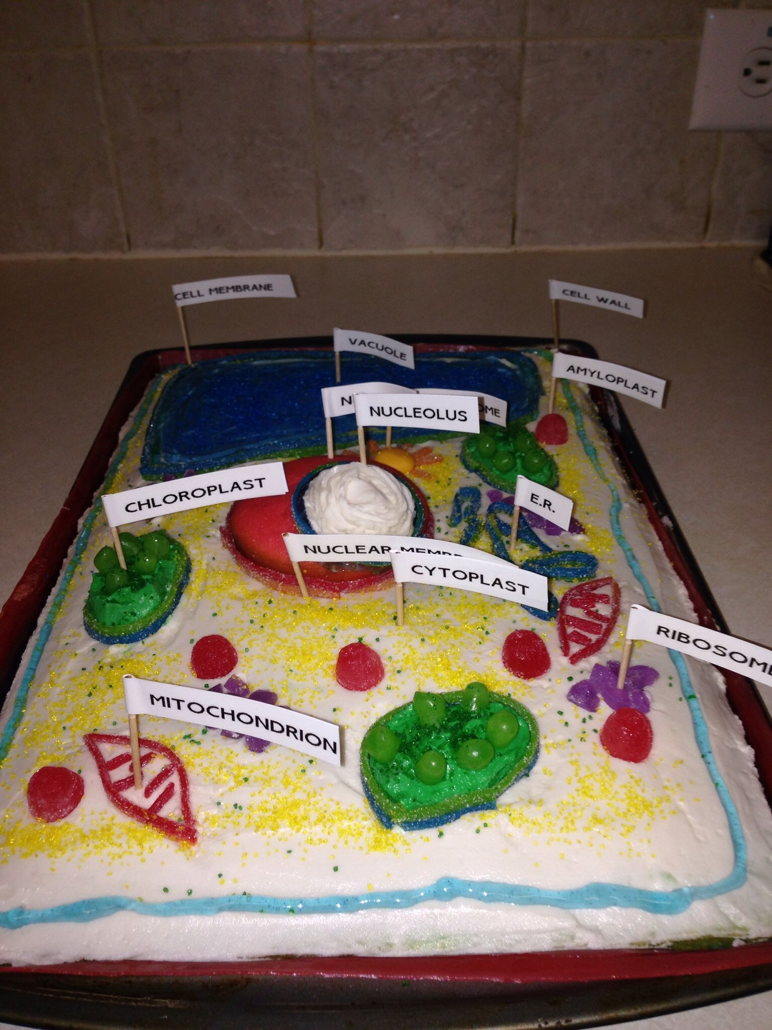Plant cell cake   Plant cell cake   Pinterest