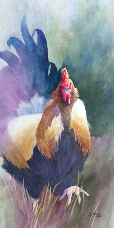 Galleries Of Available Paintings Watercolor Rooster Rooster Painting Chicken Art