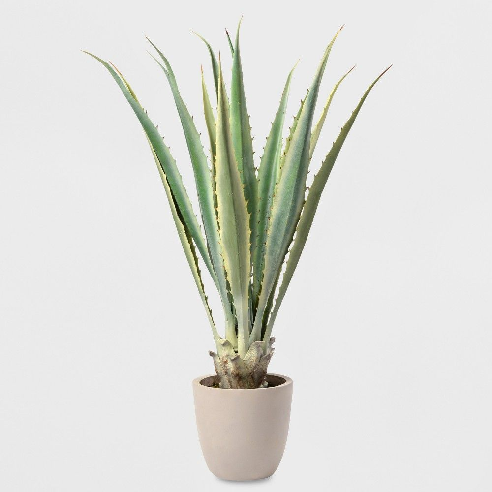 48 Potted Agave Lloyd Hannah Faux Plants Artificial Flowers And Plants Plants