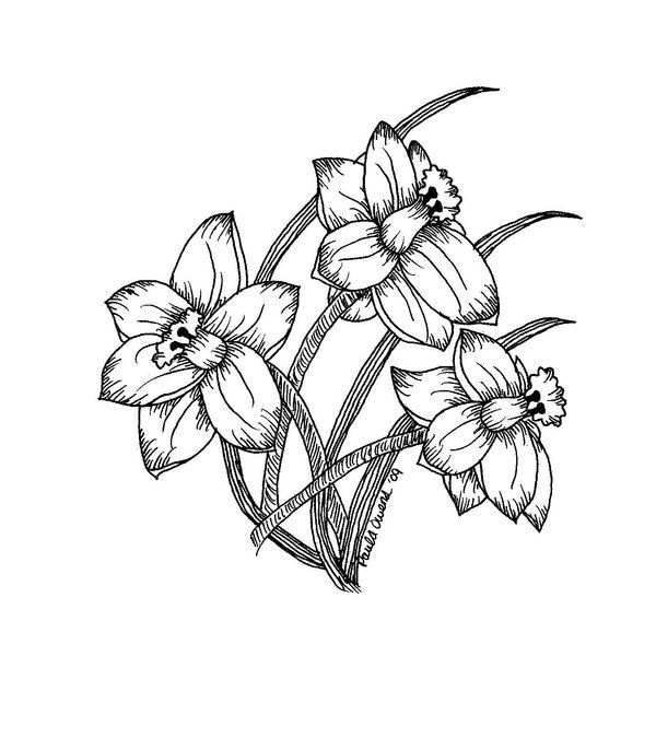 Tattoo Clipart Black And White: Daffodils Black And White Ver. By LynnLeo