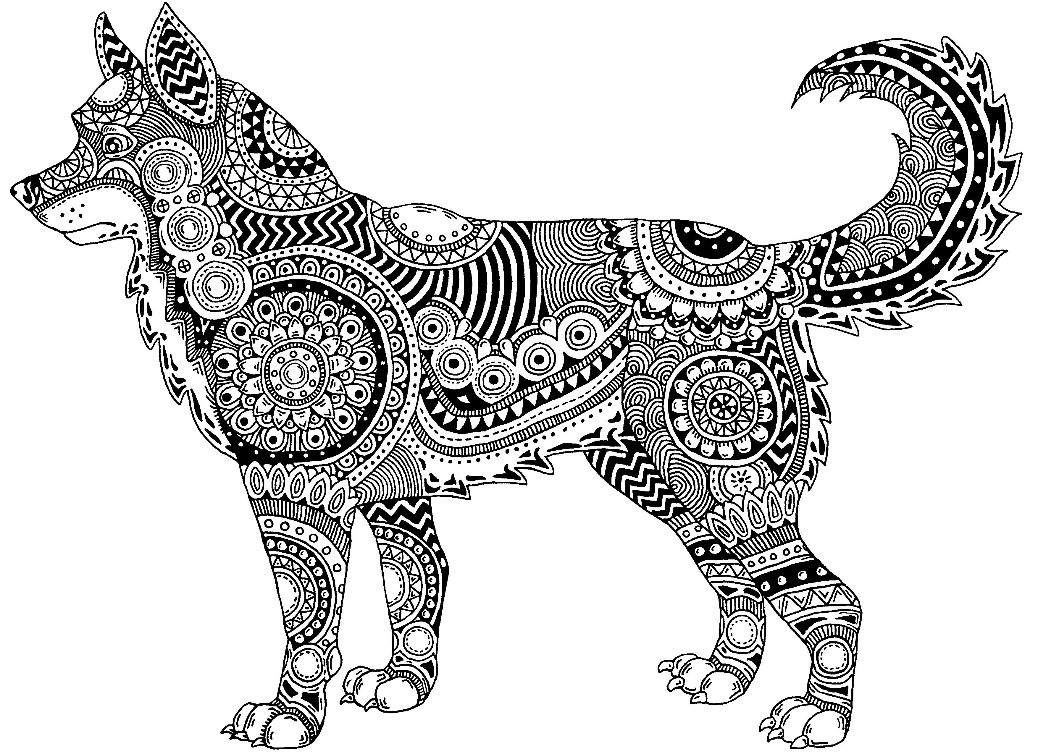 Pin On Black And White Art Zentangle And Sketches Janelle Dimmett