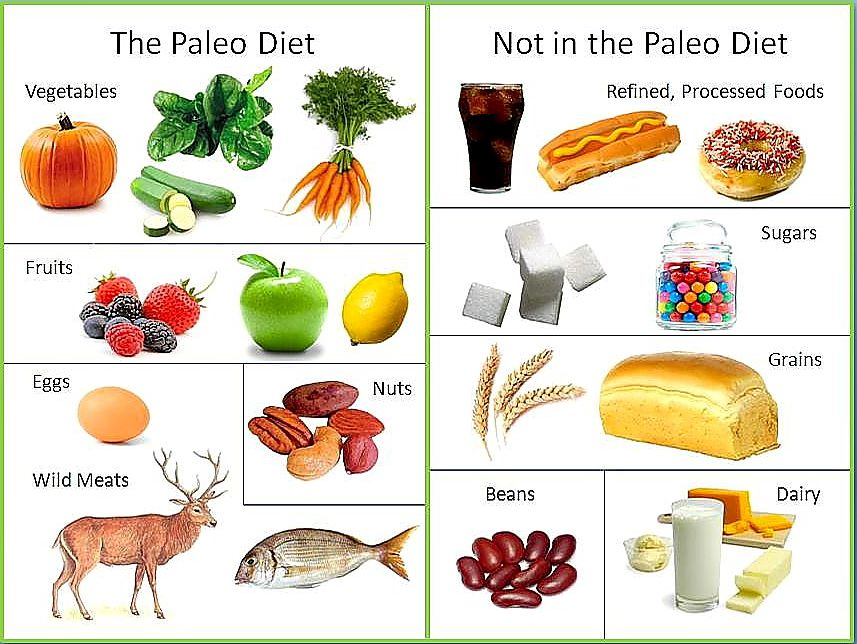 The Paleo Diet Fresh vegetables, Free range and Poultry - fresh primal blueprint omega 3