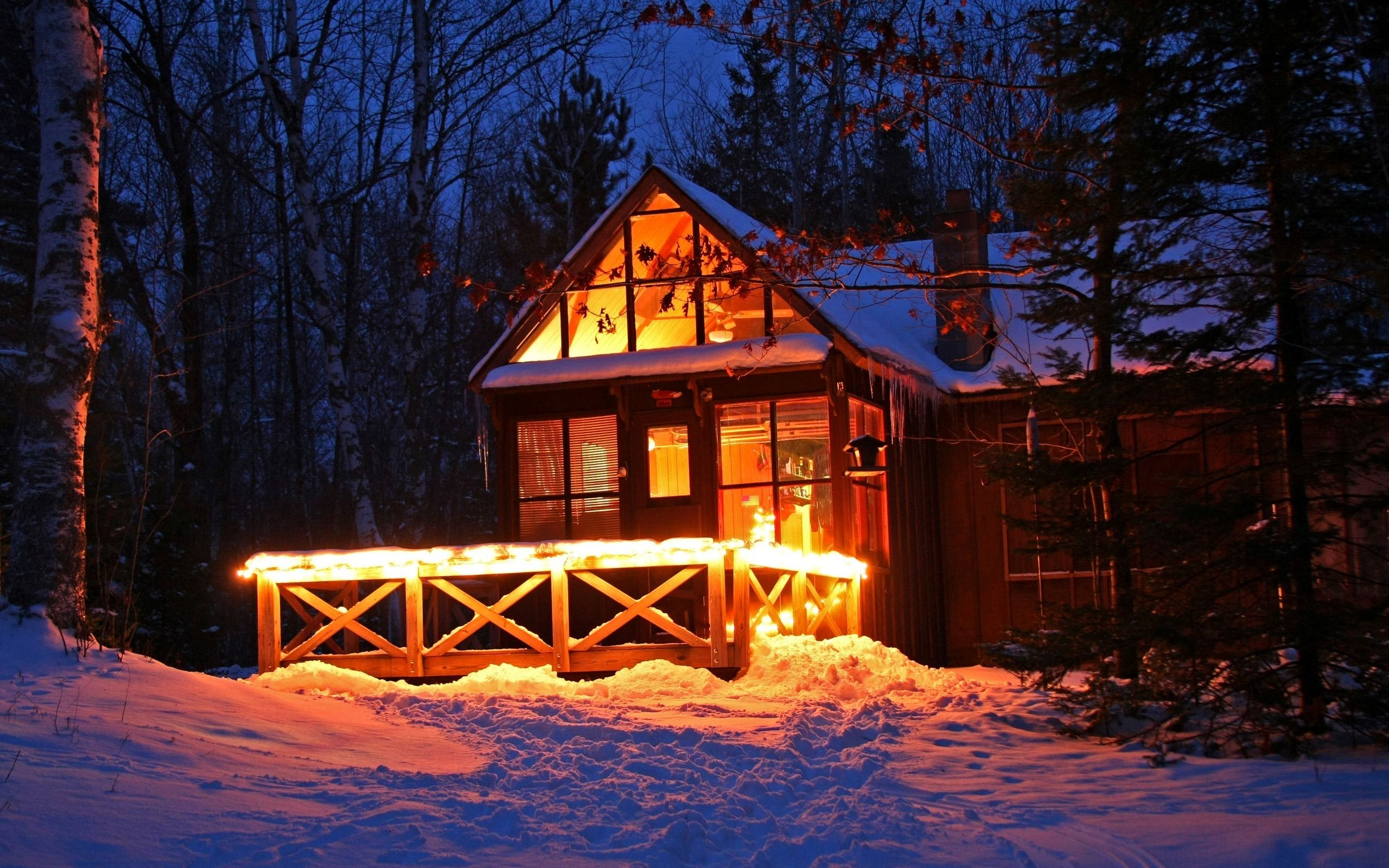 Snow Lights Night Download Wallpaper Winter Snow Night Forest