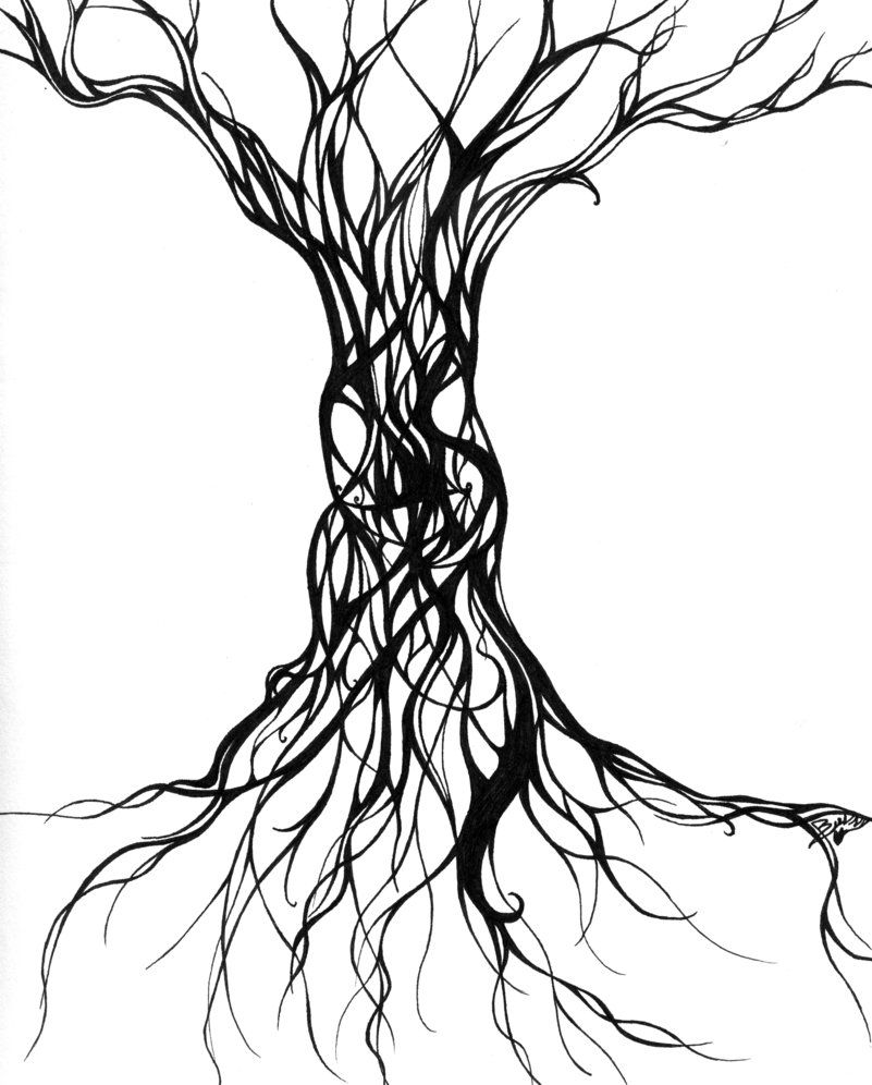 Cool Tree Black And White: Tree Drawings - ClipArt Best