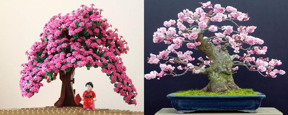 Lego Bonsai Tree Full Blossom Cherry Bonsai Tree Flowering Bonsai Tree Bonsai