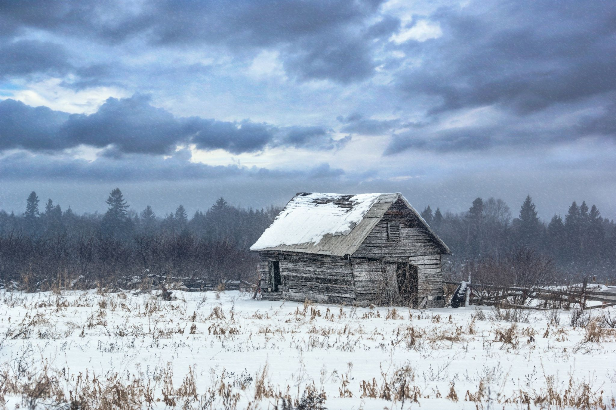 Brrrrrrr by Lee Bodson on 500px