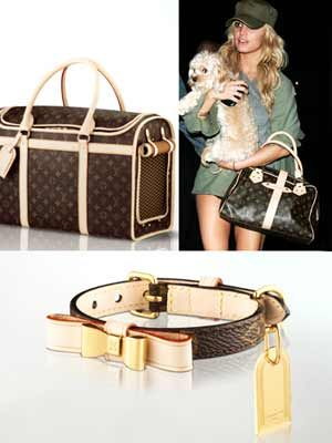 Louis Vuitton Dog Carrier 50 And Baxter Xsmall Dog Collar Why Is