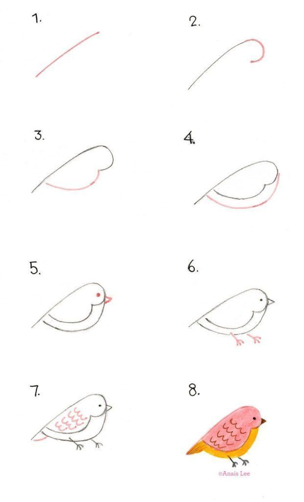 How To Draw Birds - diy Thought