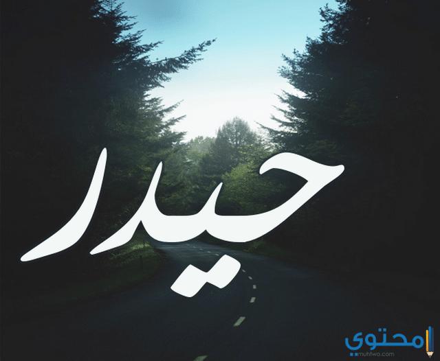 معنى اسم حيدر وحكم التسمية Hydr معاني الاسماء Hydr اسم حيدر Nike Logo