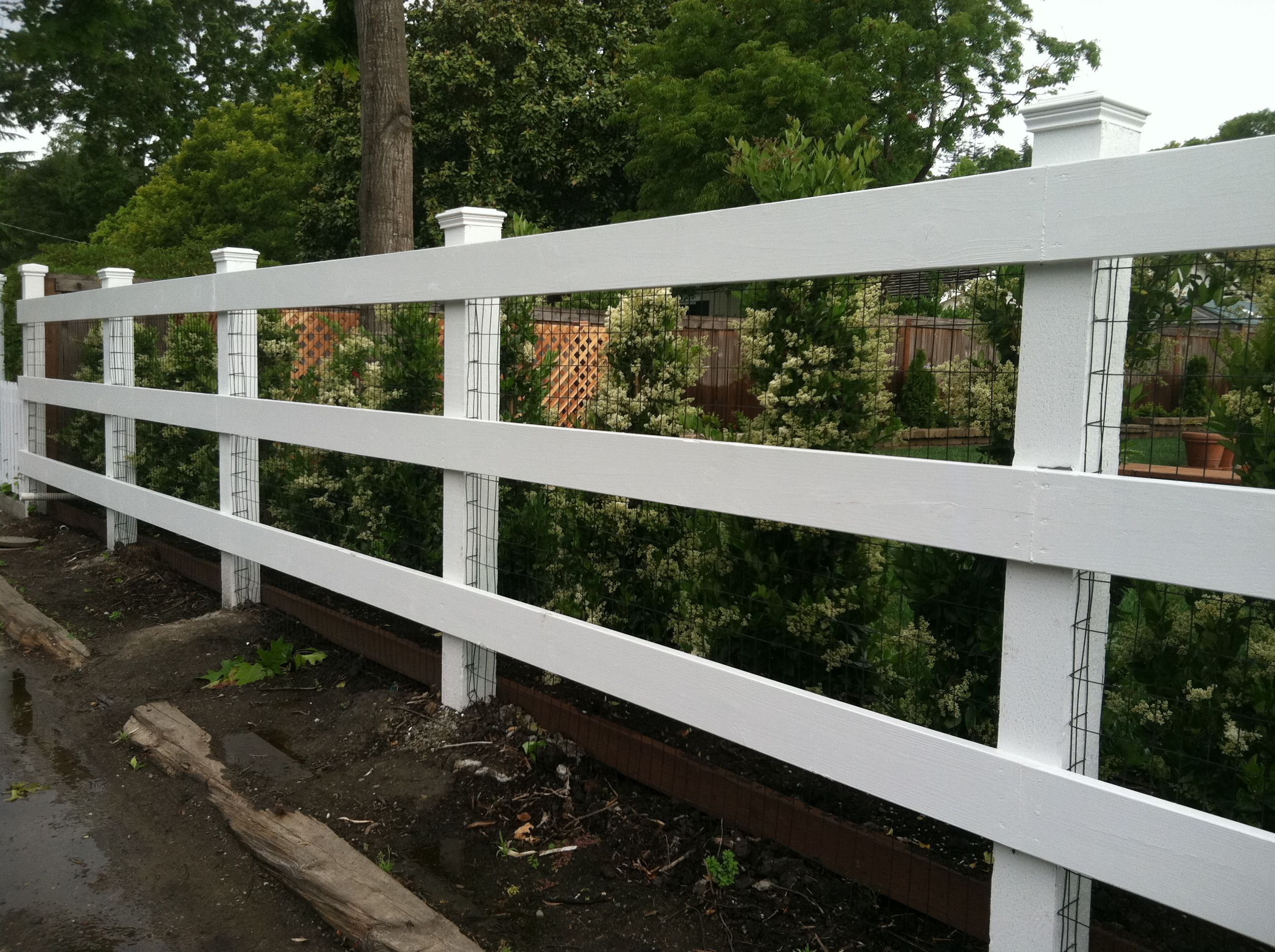 Awesome Painted White, Redwood Ranch Style Fence With Deer Fencing Nailed To The  Inside Of The