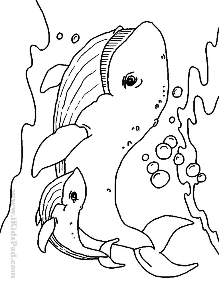 Free printable sea animals coloring book for kids | Quilts ...