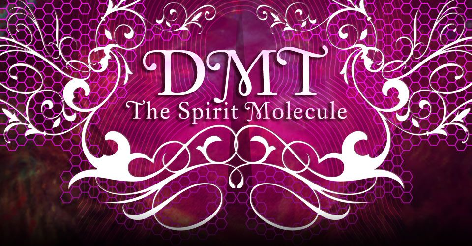 dmt the spirit molecule free pdf