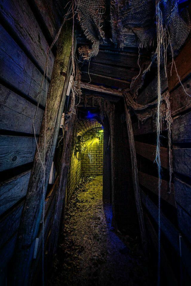 Pin by Brenda B on *CREEPY in 2020 Halloween maze