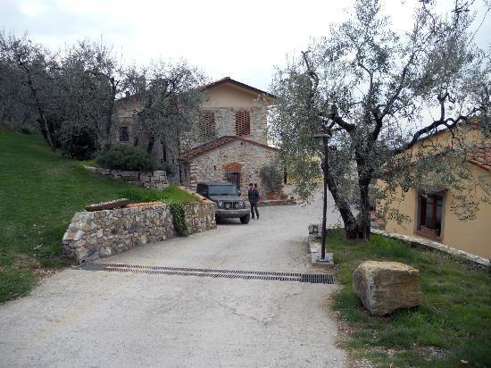 Una vacanza in Toscana in mezzo all'uliveto.