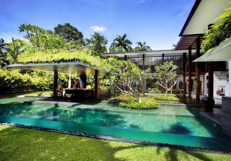piscine hors sol toit terrasse v g talis palmiers et plantes exotiques architecture. Black Bedroom Furniture Sets. Home Design Ideas