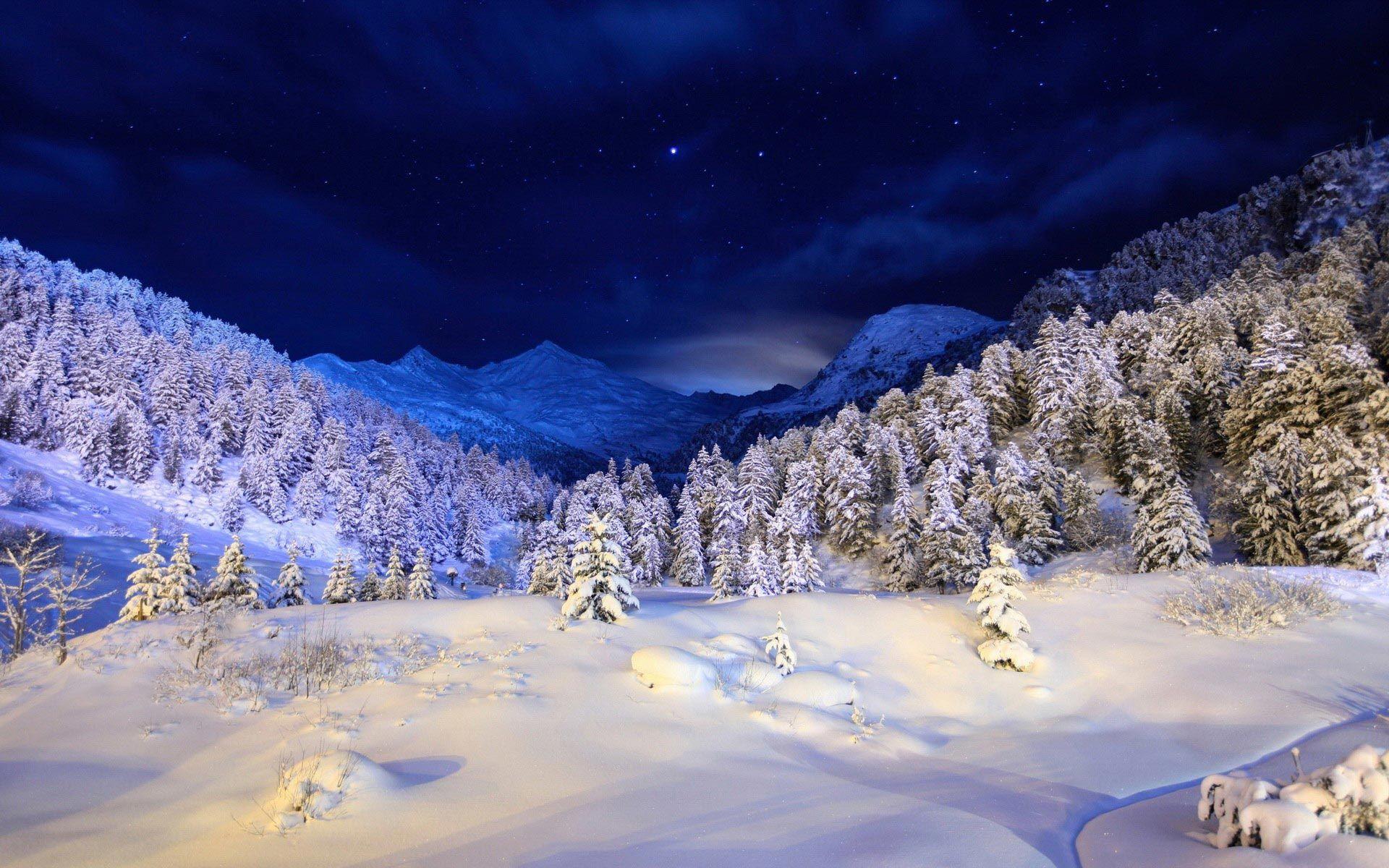 Winter Night Snow Landscape Hd Image Amazing Hd Wallpapers Winter Landscape Winter Wallpaper Winter Scenery