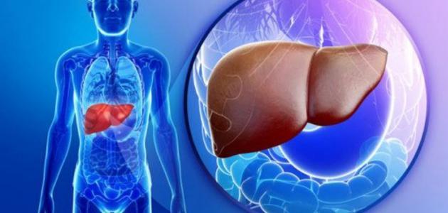 علاج تليف الكبد تقدم شركة تايلاند أدفايزور أفضل عروض وخدمات السياحة العلاجية ومنها خدمة علاج أمراض وتليف ا Fatty Liver Symptoms Fatty Liver Fatty Liver Diet