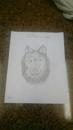 The wolf I drew. More pictures like this to come.