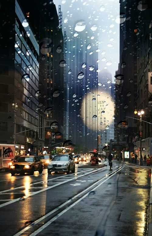 City Rain And New York Resmi Que Llueva Que Llueva