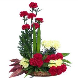 20 Yellow And Red Carnations Basket Online Flower Delivery Flower Arrangements Flower Delivery