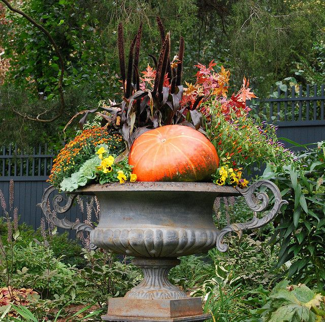 All that goodness in one magnificent urn    heathers pics 09 064 by oddjoblandscaping, via Flickr