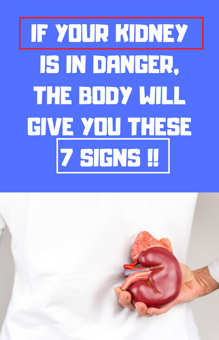 IF YOUR KIDNEY IS IN DANGER, THE BODY WILL GIVE YOU THESE 7 SIGNS !!