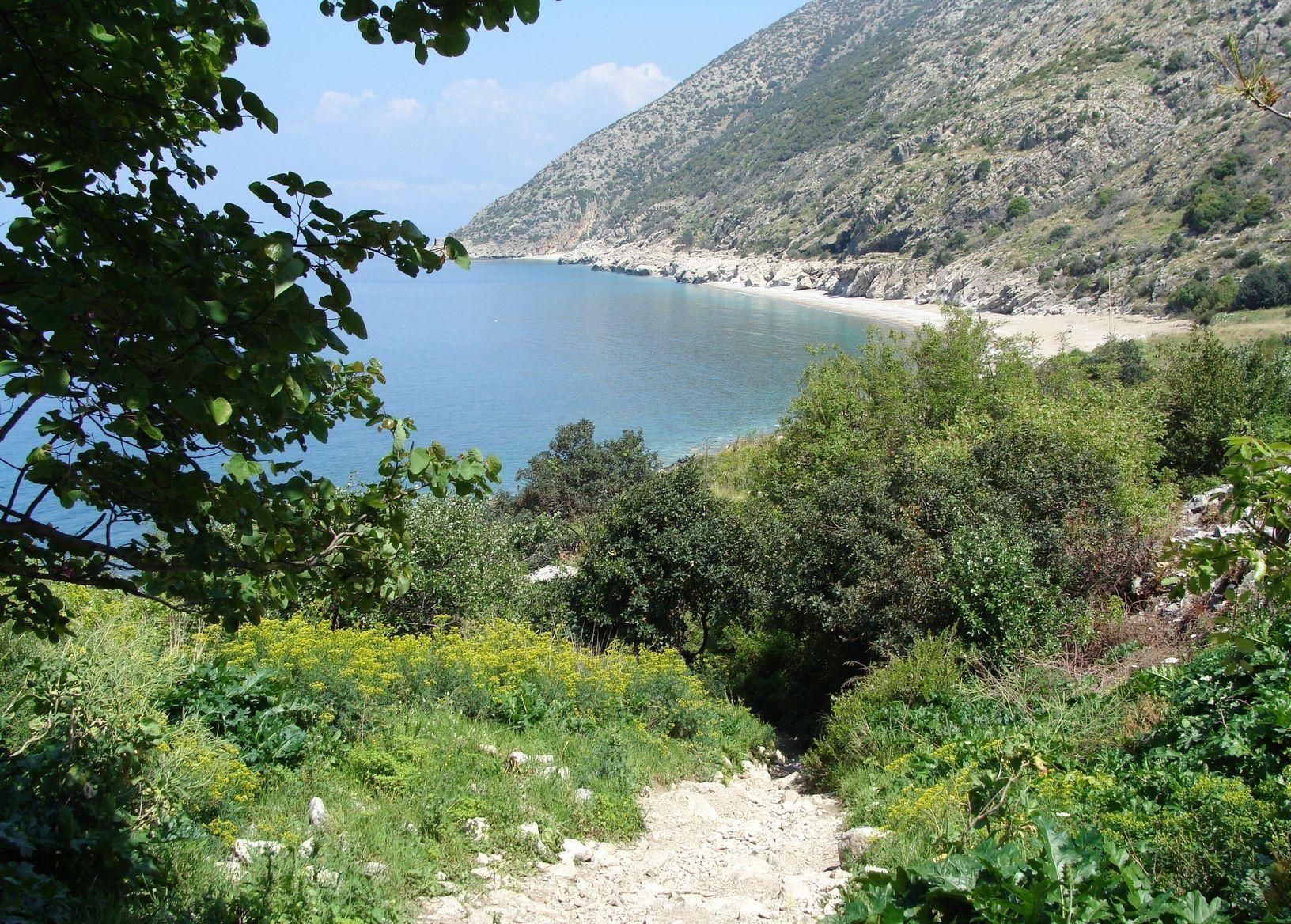 Al Samra Kessab Latakia
