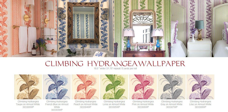 Quadrille Climbing Hydrangea Wallpaper Hydrangea Wallpaper