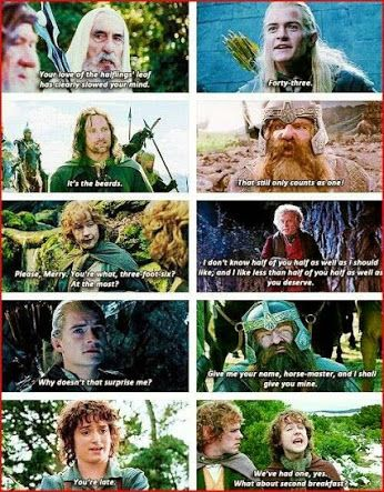 Fellowship of the ring book quotes