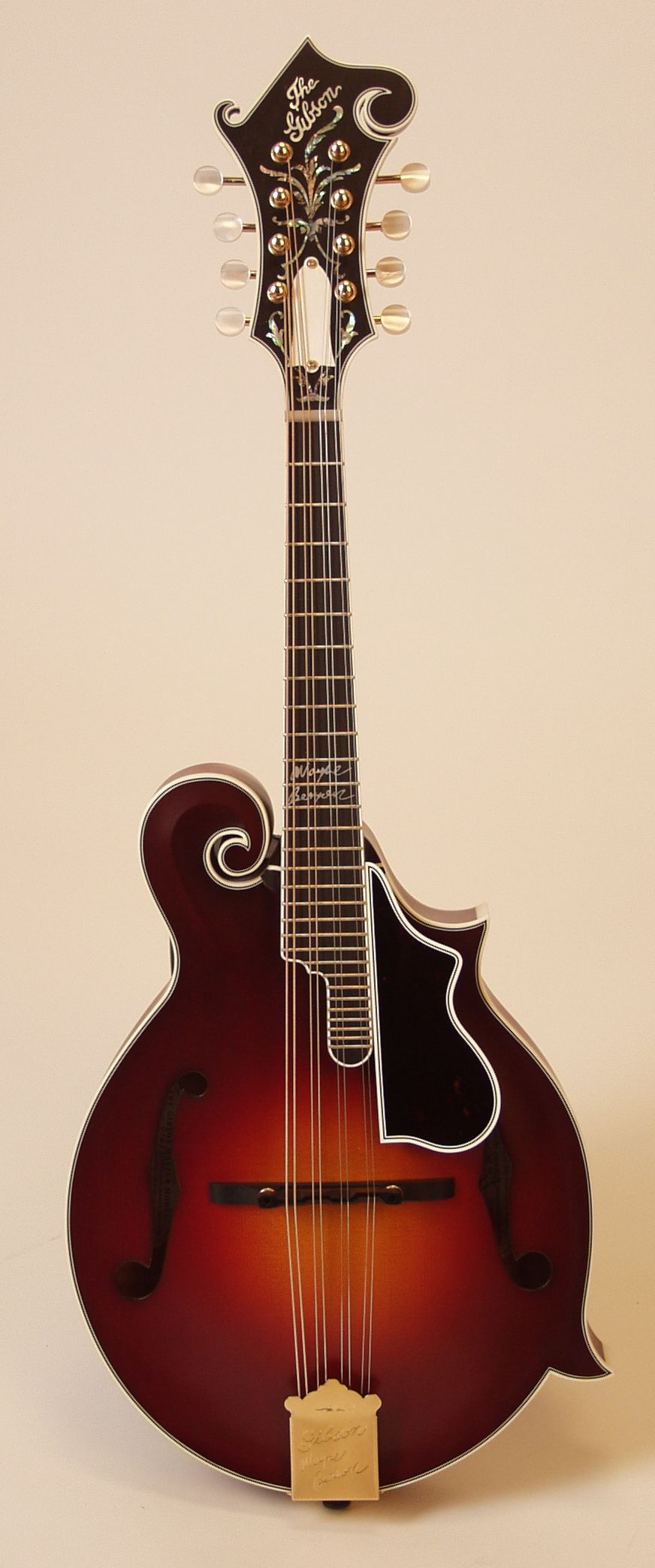 I want to learn to play the mandolin...preferably a Gibson.