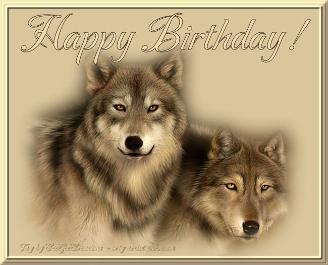Image result for happy birthday wolf pix