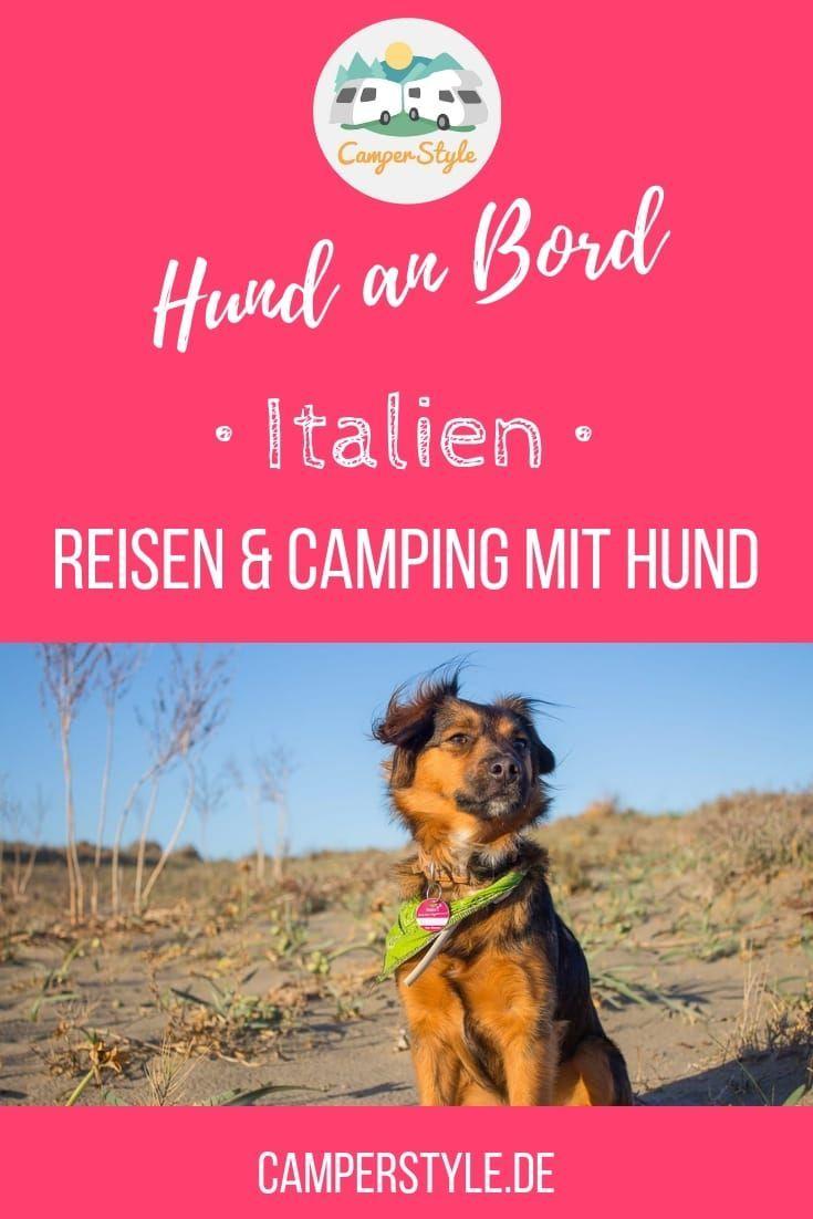 Reisen Und Camping Mit Hund In Italien Einreise Gesundheitsvorsorge Bestimmungen Vor Ort Camping Campingplatz Italien Reisen