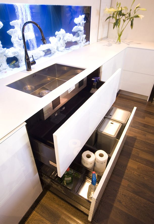 Modern Kitchen Design With Integrated Fish Tank Back