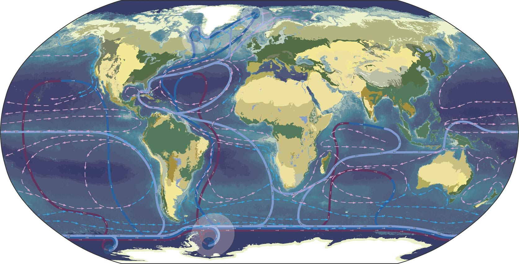 Earths Map%0A Climate Change  Deforestation  Biomes and Ocean Currents  Plankton   Endangered Species  Earth Web Site