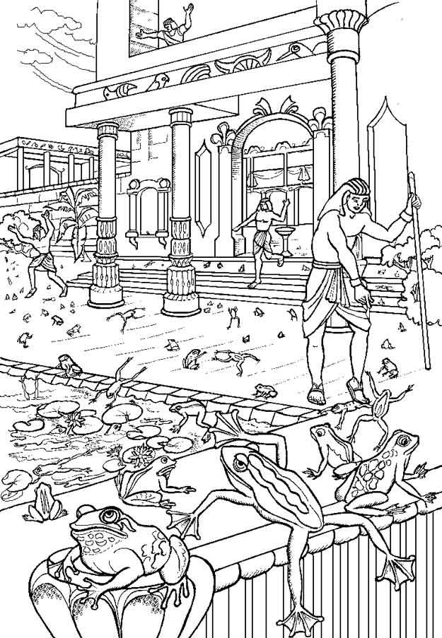 Para colorear - La plaga de las ranas | ACTIVIDADES BÍBLICAS PARA ...
