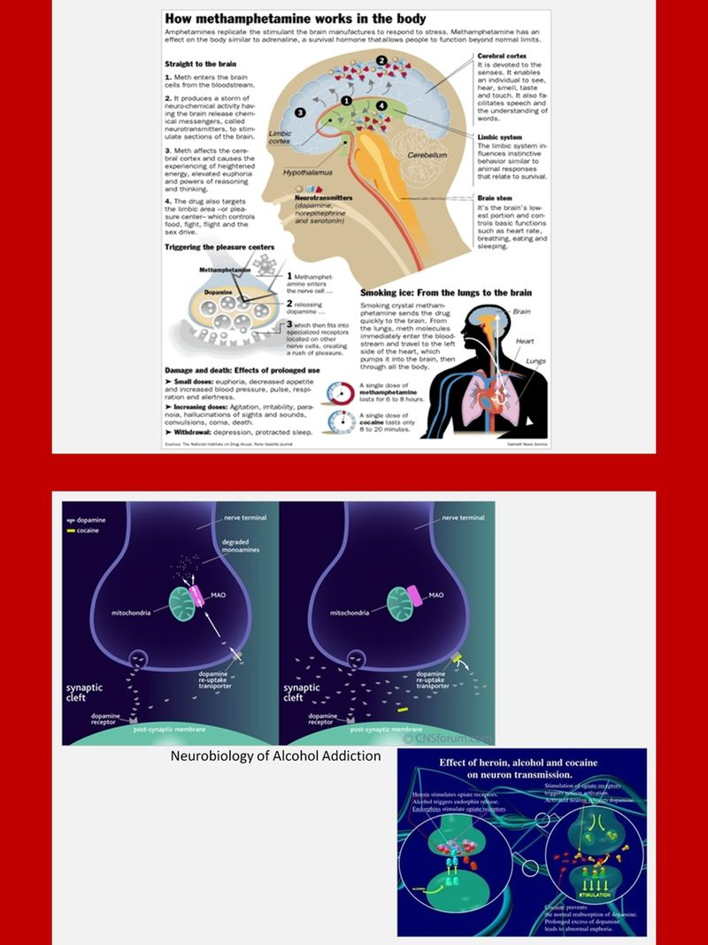 Addiction Charts And Diagrams With Private Label Rights 33 Pictorial That