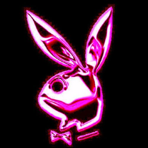 Bunny icon myspace playboy